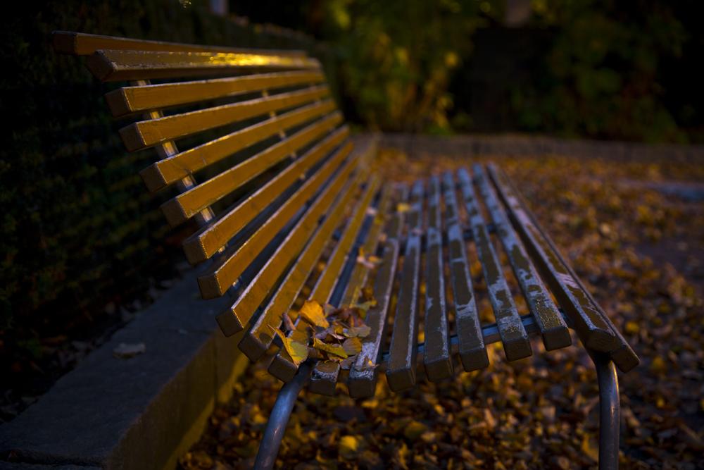 Övergiven parkbänk, så när som på några löv som har blåst dit...