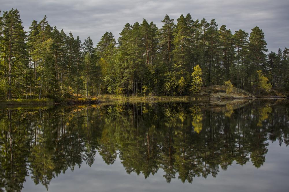 Spegelbild vid Axsjön i Östergötland