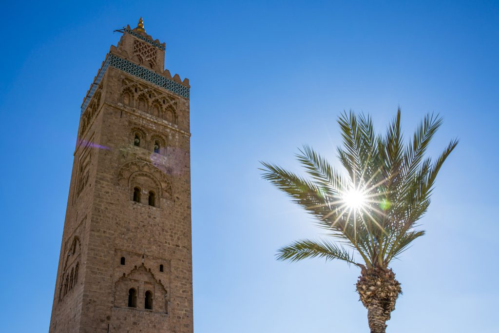 Lite solstrålar genom en palm med Marrakech stoltaste Moské Koutoubia- ett måste!