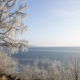 Januari i Östergötland