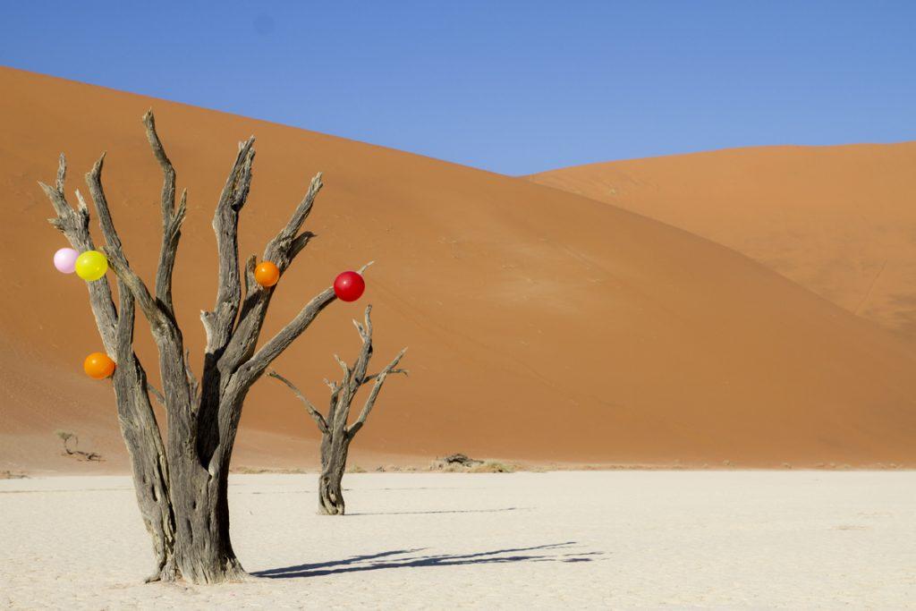 Ylva installerade färglada ballonger i ett träd. Många bilder har tagits denna miljö men vi har aldrig sett några ballonger förut