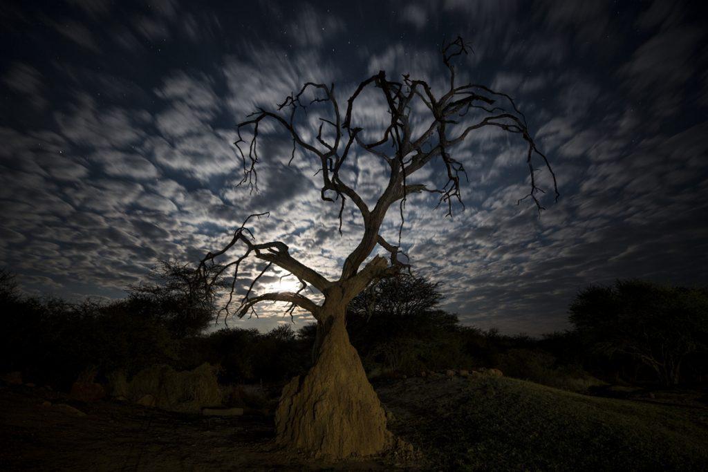 Lite kvällsfotografering med månen som ljuskälla