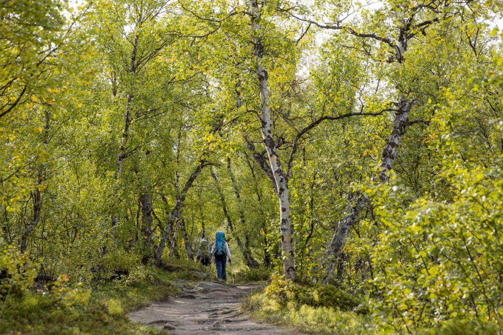 Många är de vandrare som passerar oss med betydligt större ryggsäckar och med större ambitioner vad gällande sträcka att gå