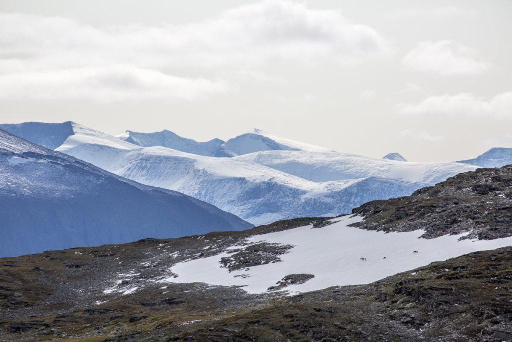 Berg så långt ögat når söderut från Nuolja