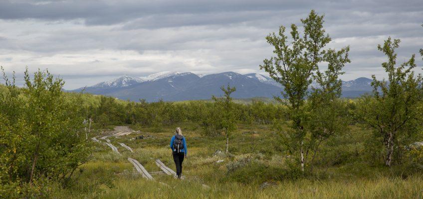Vandra Kungsleden