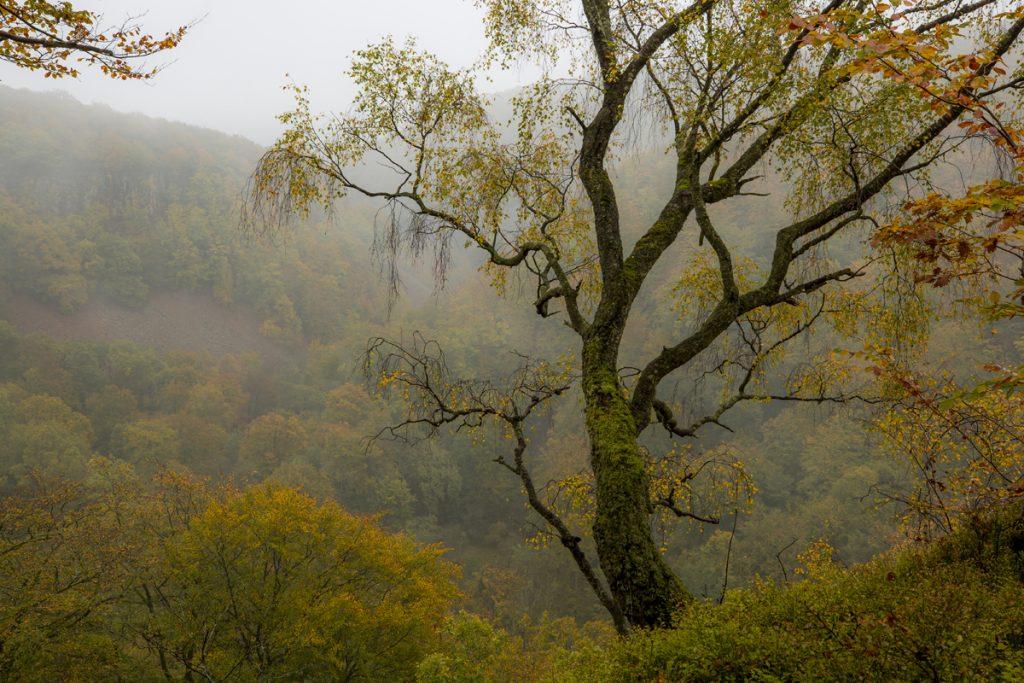 De låga molnen hjälper till i skapandet av stämningsfulla bilder. Bilden tagen från Kopparhatten