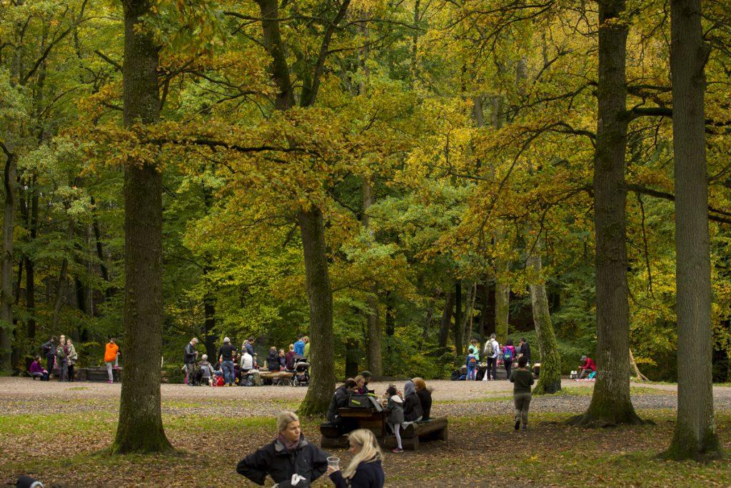 Människor från många håll i Skåne men även från andra sidan sundet hittar hit på helgerna.