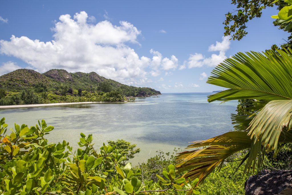 Promenaden går genom fantastisk natur genom en liten del av ön Curieuse. Härifrån såg vi stora örnrockor