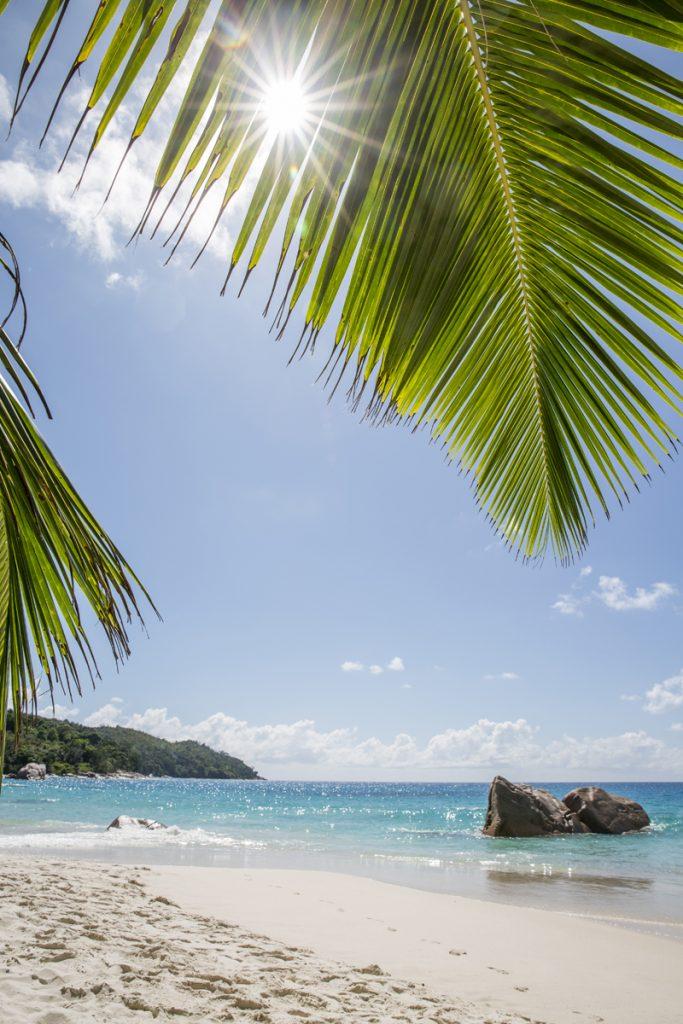 Vi skyddar oss mot solen i vår strandkoja under palmerna på vackra Anse Lazio