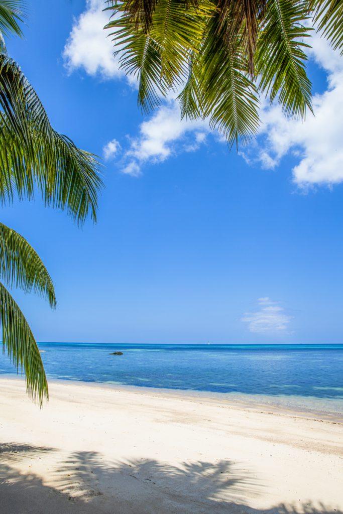 Varje strand är en exotiskt naturupplevelse