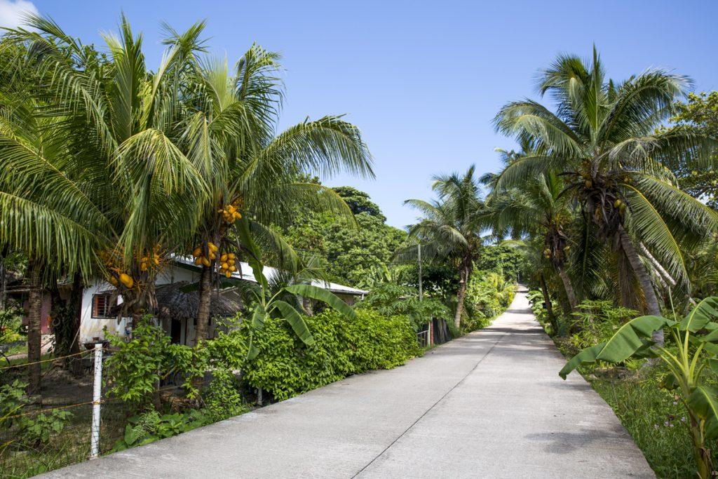 På östra sidan av La Digue går vägen ömsom genom djungelmiljöer, ömsom vid havet. Oavsett vilket är det underbart att cyklande ta sig runt i dessa miljöer