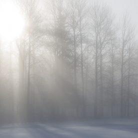 Vinterdimma i Tinnerö