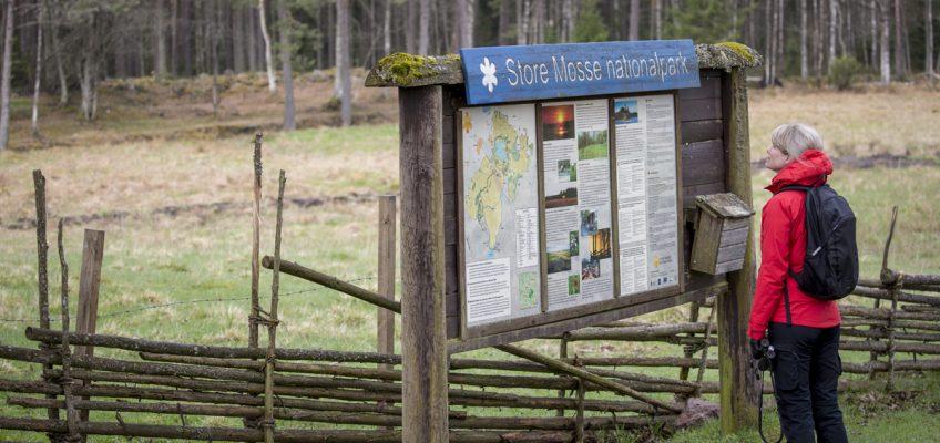 Vår i Store Mosse Nationalpark