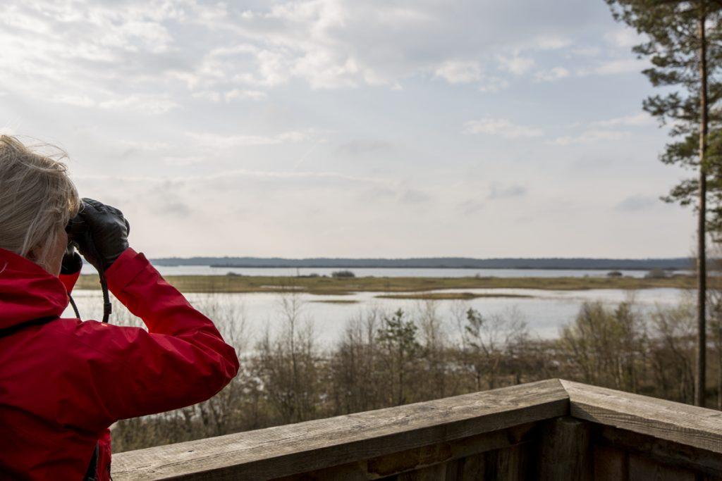 Fågeltornet vid västra änden av Kävsjön, inte så mycket aktivitet idag.