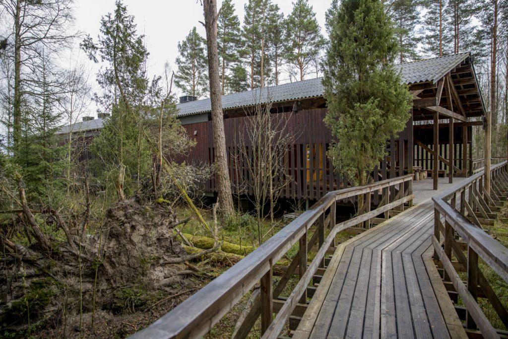 Naturum ligger skyddat i skogsbrynet.