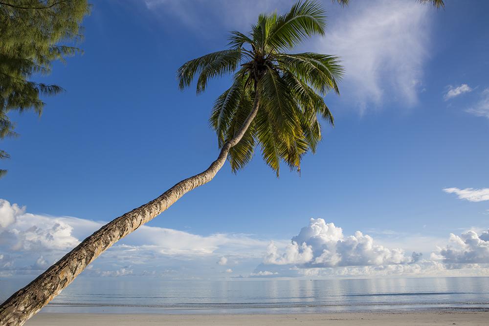 The Seychelles Anse Volbert