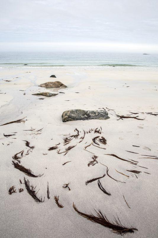Vandringen börjar vid stranden Laupsvika strax söder om Bleik på Andöya i Norge