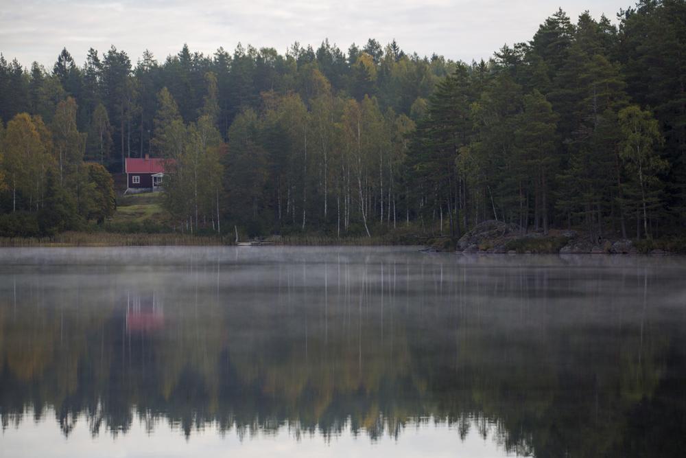 Röd stuga vid skogssjö i gryning