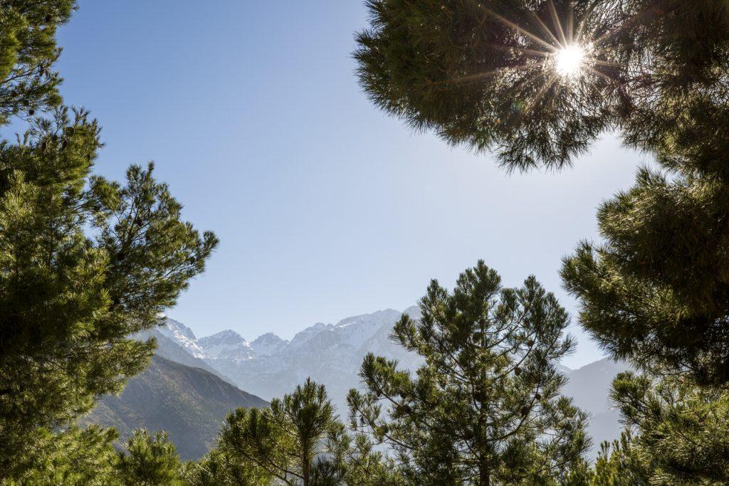 En av topparna mellan grenarna är Toubkal med 4167 m. Afrikas näst högsta topp.
