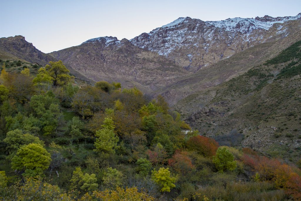 Förväntningarna införlivades i gryningen - Altasbergen var ännu vackrare än man kunde hoppas. Vy från vår balkong.