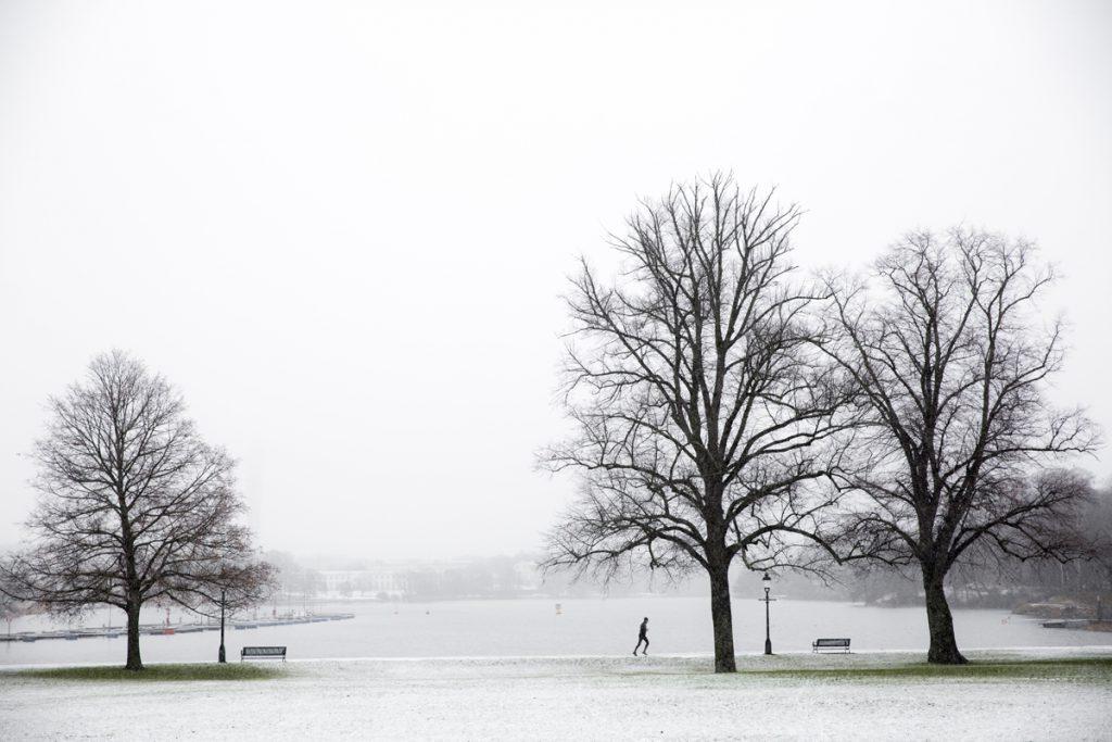 Vinterstämning på Djurgården