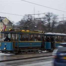 Jul i Stockholm –  Älgar i Stan