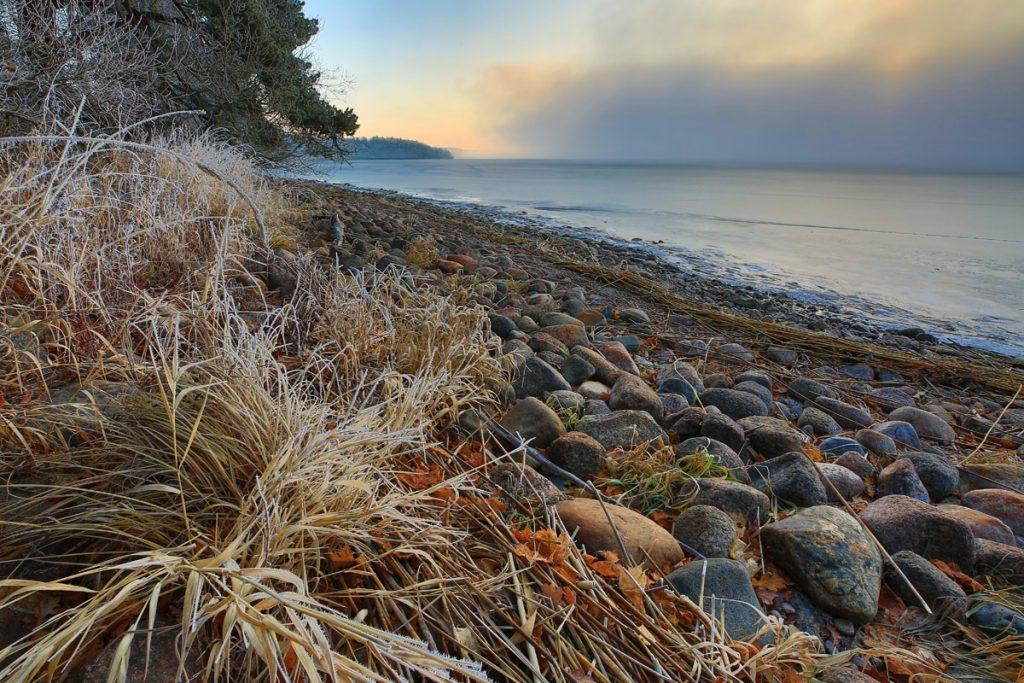 Dimman drar iväg och varmt ljus ger sköna färger på den gamla vassen och de runda stenarna