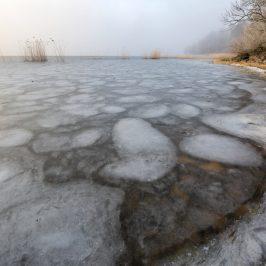 Isig vintermorgon
