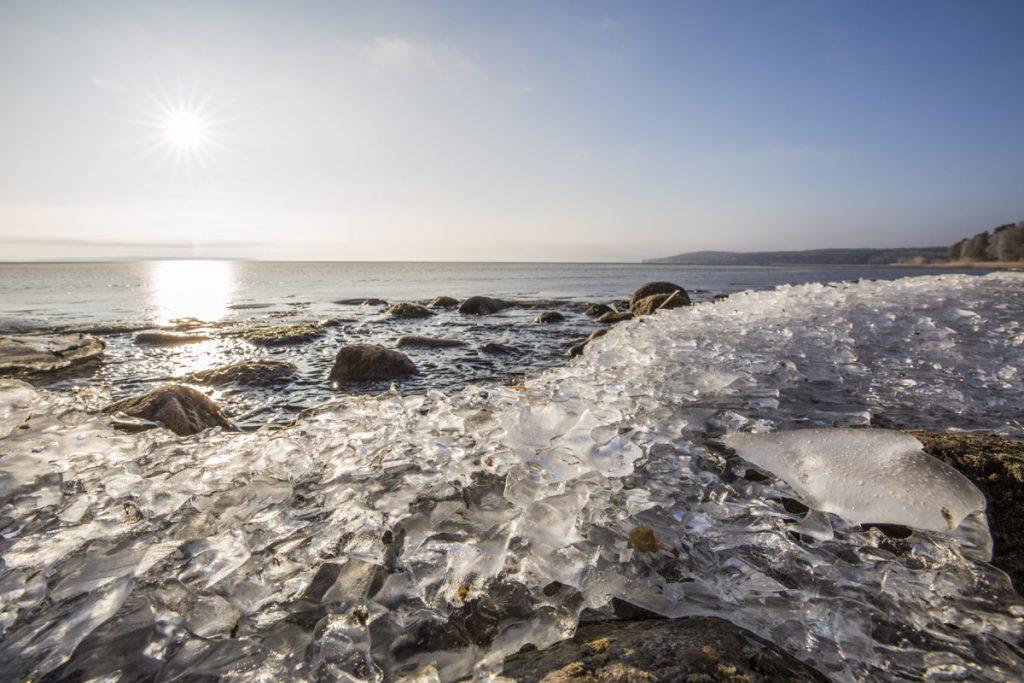 Solen har nu bränt bort dimman och sänder sina strålar på de vackra iskristallerna som formats vid strandkanten