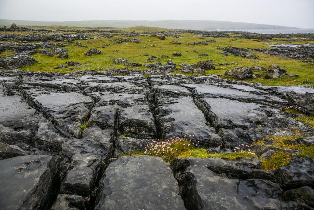 Burren, ett enormt landskap med häftiga kalkstenformationer.