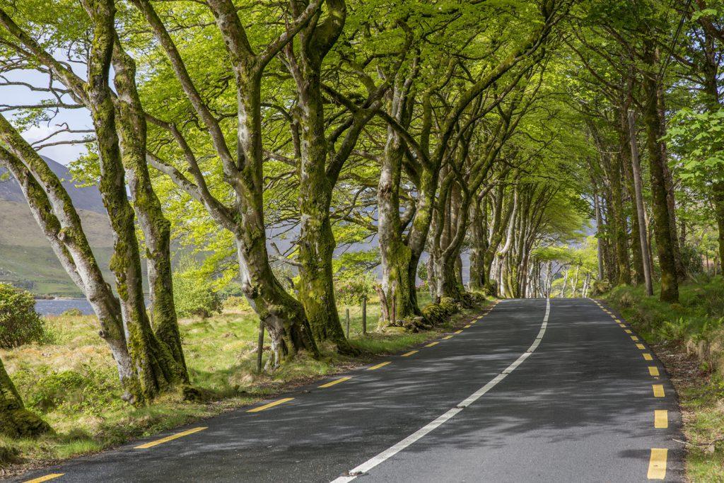 Att bila på Irland är som att färdas genom vackra tavlor