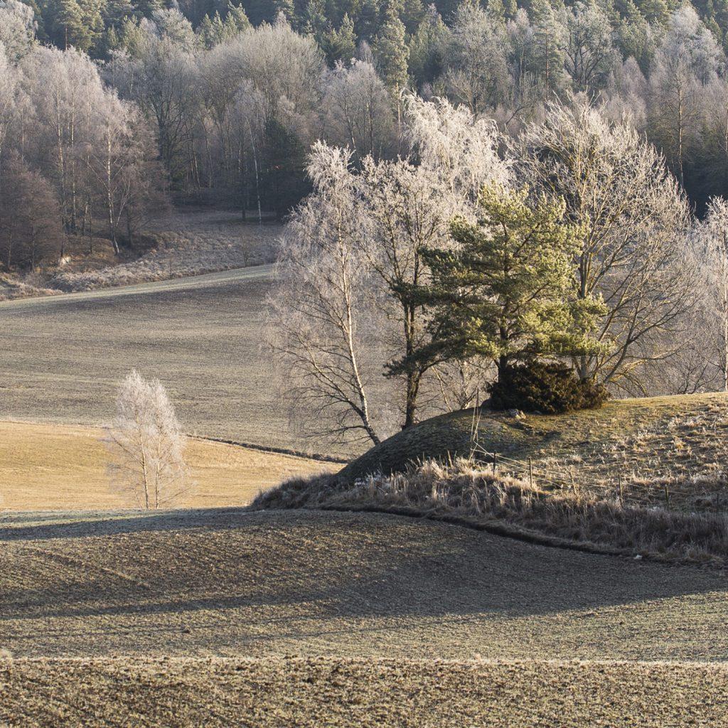 Mer rimfrost
