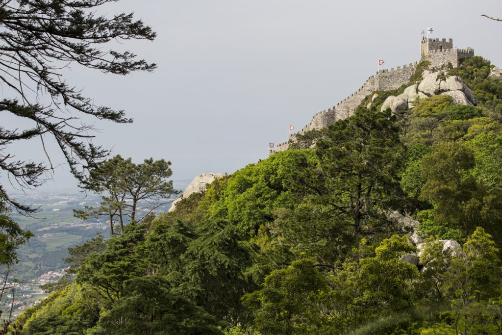 Castelo dos Mouros smälter in i miljön på berget Serra de Sintra