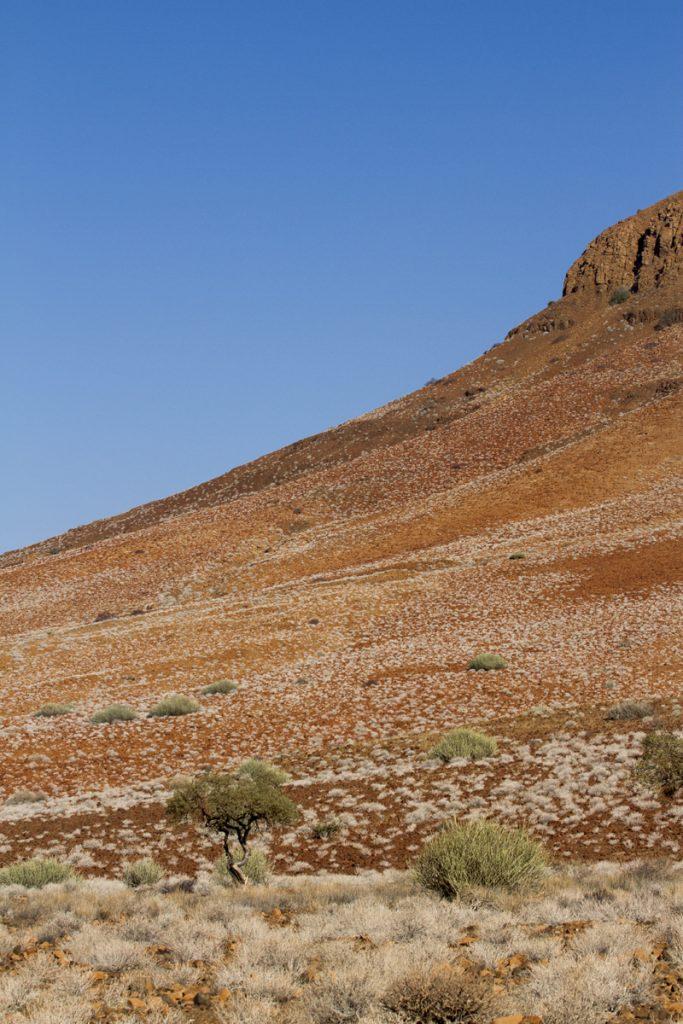 Vackra färger längs bergsluttningarna i Damaraland