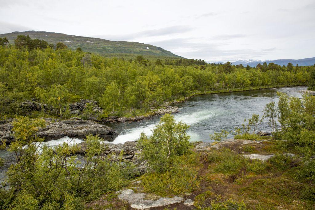 Många vackra vyer längs Kungsleden, Abiskojokken forsar för fullt och berget Nuolja visar sig i bakgrunden