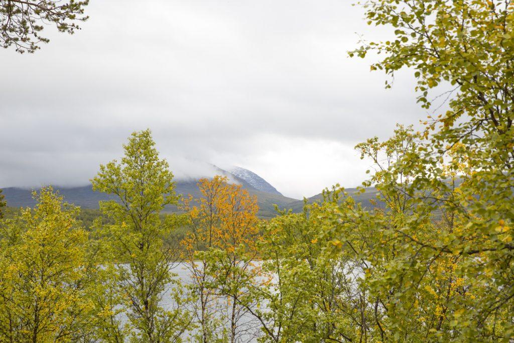 Man kan ta en avstickare till sjön Vuolip Njahkajarvi. Vid klart väder ser man Lapporten härifrån det fick inte vi