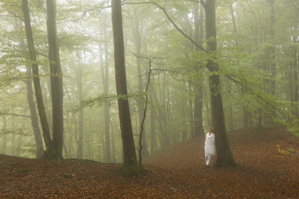 Vi passar på att nyttja det mystiska stämning som råder i bokskogen när molnen drar in genom landskapet.