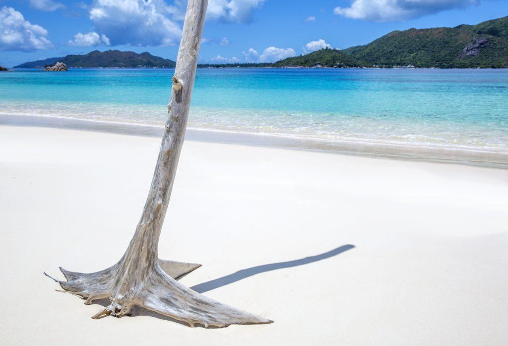 Anse ST Jose, här stryker fiskar runt våra ben och vi har en hel strandremsa alldeles för oss själva. Paradiset!