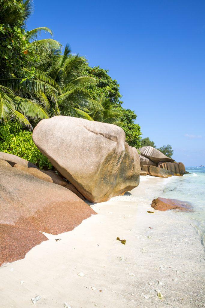 Motiven är oändliga på paradisöarna Seychellerna