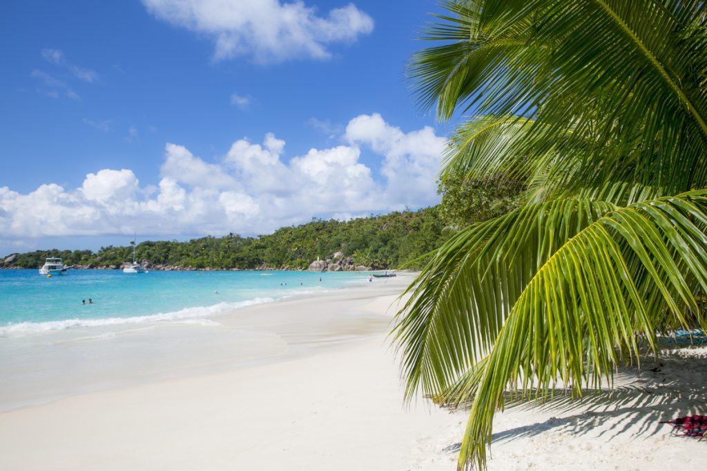 De många palmerna bidrar till att Anse Lazio anses som en av de vackraste stränderna i världen