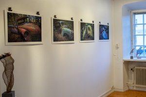 Utställning i Rådhuset - Söderköpings konstförening