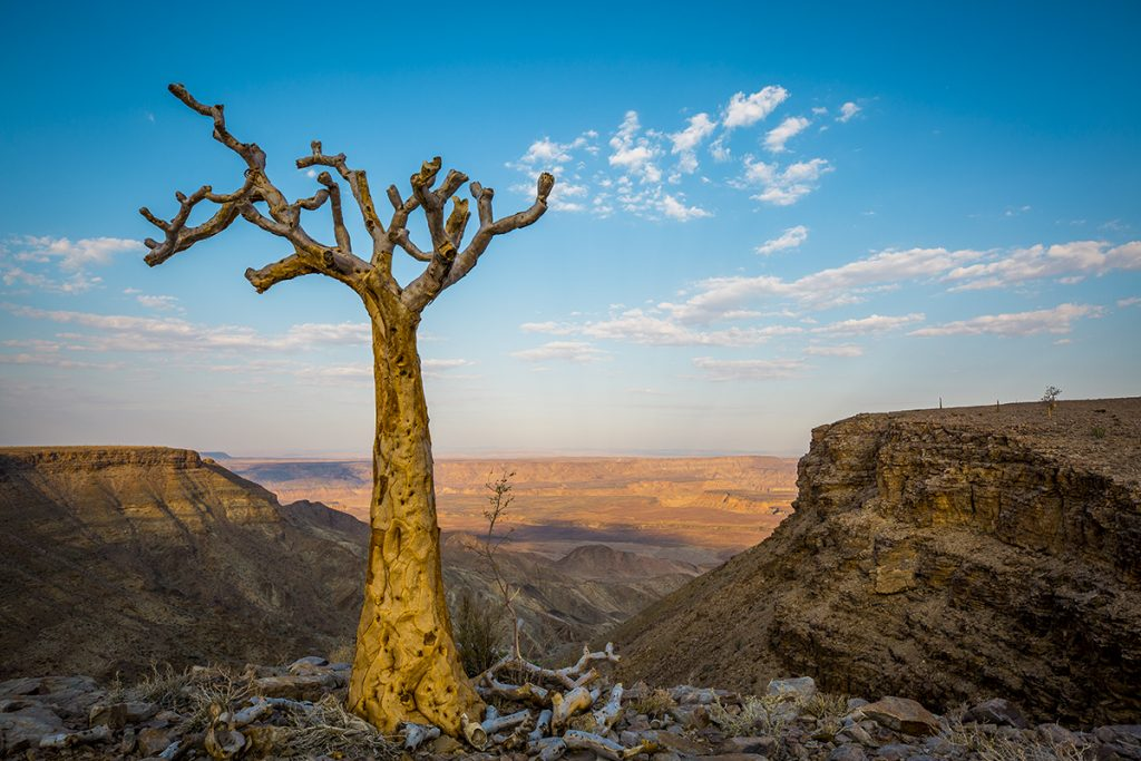 Roadtrip in Namibia. First days at our adventure in southern parts of this beautiful country with highlights like Fish River Canyon and Kolmanskop