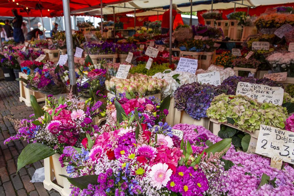 Ett av många blomsterstånd på marknaden i Haarlem