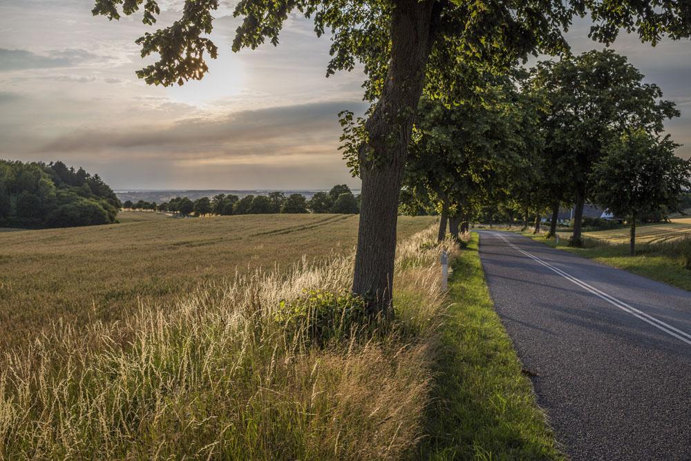 Landsbygd i Danmark