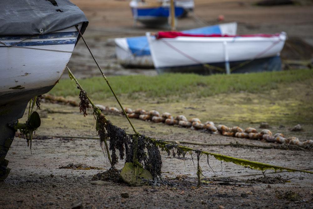 Båt i lera vid ebb
